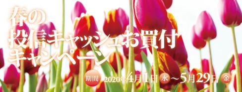 春の投信キャッシュお買付キャンペーン